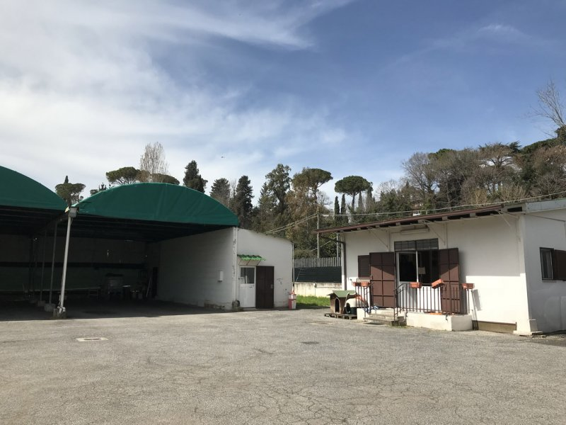 Fittasi terreno - Аренда земельных участков